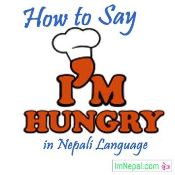 How to Say I Am (I'm) Hungry in Nepali Language - learn Nepali through English language