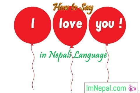 how to say i love you in Nepali language - learn Nepali through English language